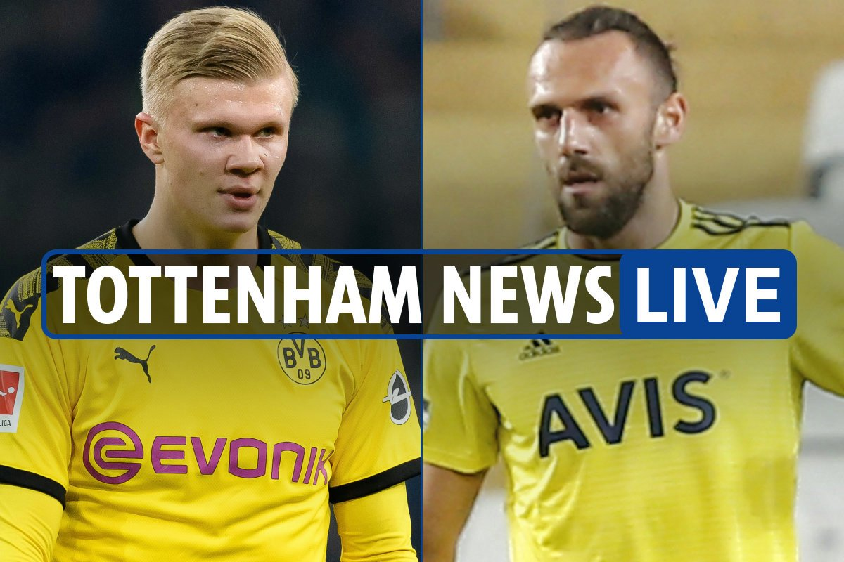 11pm Tottenham news LIVE: Haaland transfer interest, Muriqi move in limbo, Harry Kane will be fit for Prem return