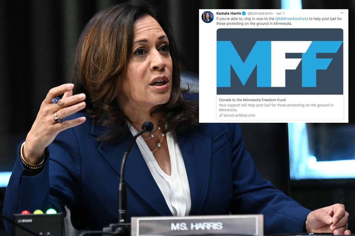 Black Lives Matter bail fund supported by Kamala Harris 'helped free six men accused of domestic violence in two months'