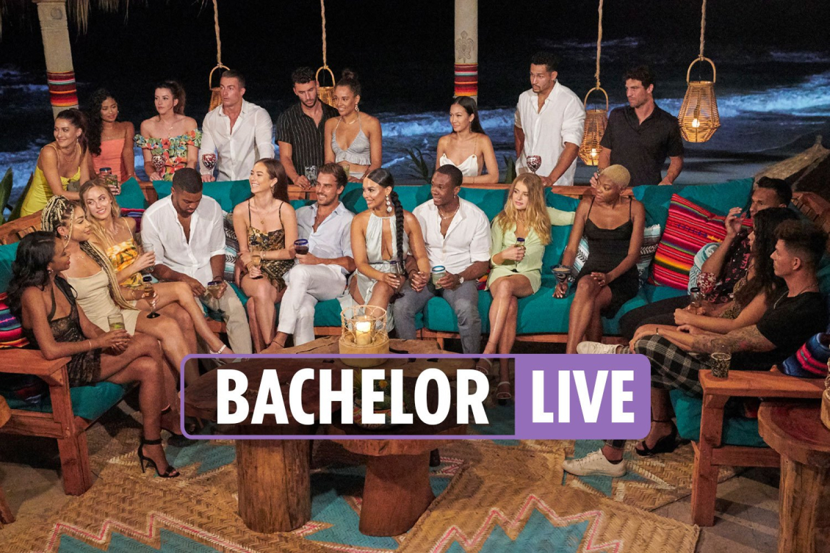 Bachelor in Paradise LIVE tonight – Brendan loses 100K Instagram followers after Natasha & Pieper love triangle scandal